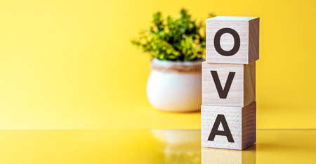 Modern business buzzword - OVA. Word on wooden blocks on a white background. Close up