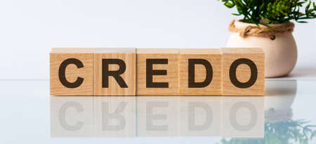 Word credo. Wooden small cubes with letters isolated on white background with copy space available. Credo message word on a wooden desk on cube blocks with a flower on background 写真素材