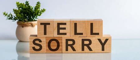 An image of letter imprinted wood blocks displaying the words - TELL SORRY. Front view concepts, flower in the background.