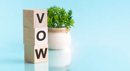 Letter of the alphabet of VOW on a light blue background. Front view concepts, flower in the background Stok Fotoğraf