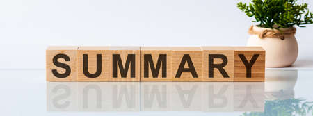 SUMMARY is a word written in black letters on wooden cubes located on a white mirror surface. The inscription is reflected, in the background there is a flower in a pot of light brown color