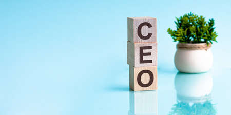 Letter of the alphabet of CEO on a light blu background. The written text is mirrored from the glossy surface. In the background is a flower in a pot. CEO - chief executive officer