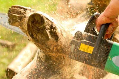 woodworking, lumbering, logging