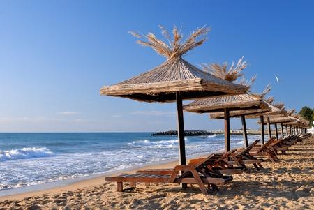 empty sunchairs and umbrellas on the sunny beach