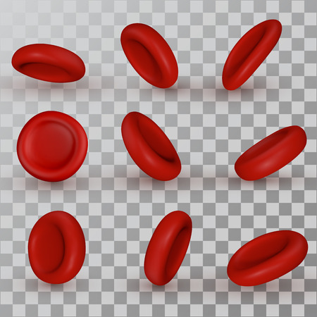 Vector red Blood Cells