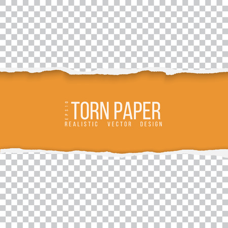 Realistic vector torn paper border with space for your text Vectores
