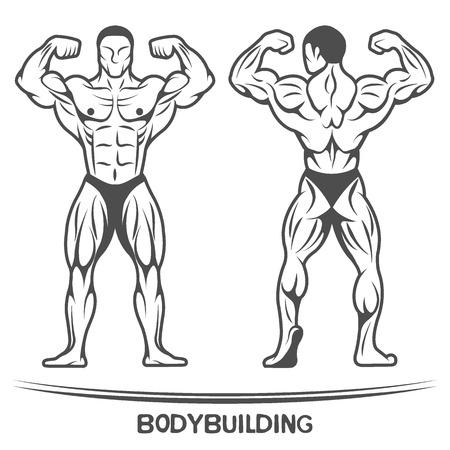 uomo nudo: Bodybuilder due posizioni-on isolato Illustrazione vettoriale.