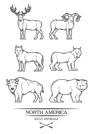 Large animals in North America. Vector illustration. Vettoriali