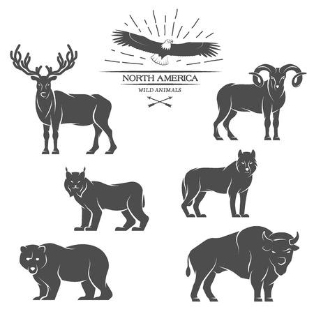 Grandi animali in Nord America. Illustrazione vettoriale