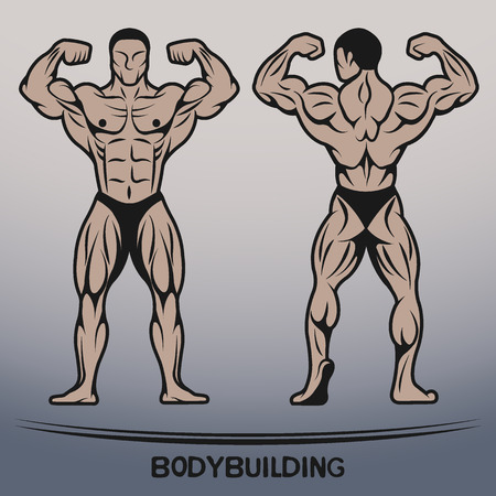 Bodybuilder Position the front and rear. Vector illustration.