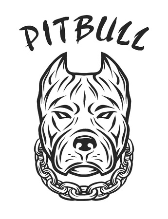 pitbull: The head of a pit bull with a collar. Vector illustration.
