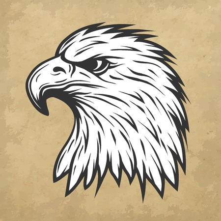 Proud eagle head in profile.  Line art style. Vector illustration. Ilustração