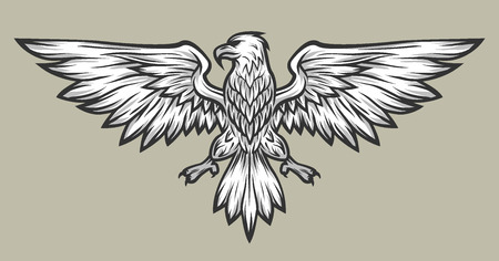 eagle symbol: Eagle mascot spread wings. Symbol mascot Vector illustration.
