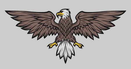 Eagle mascot spread wings. Symbol mascot Color version.