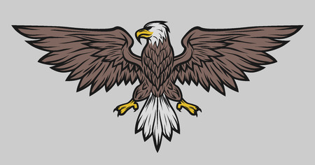 Eagle mascot spread wings. Symbol mascot Color version.