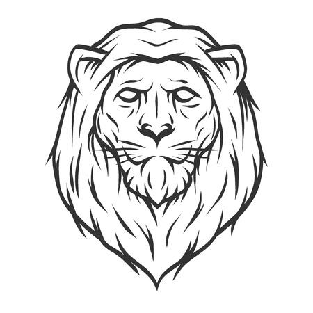 Lion head. Line art style Vector illustration.