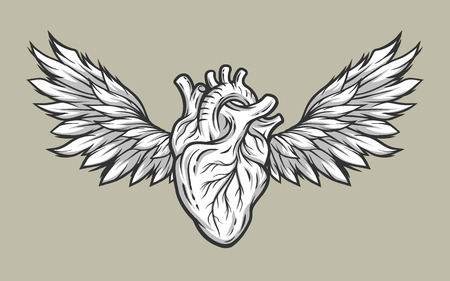 Anatomical heart with wings. Tattoo sign,symbol Line art style. Illustration