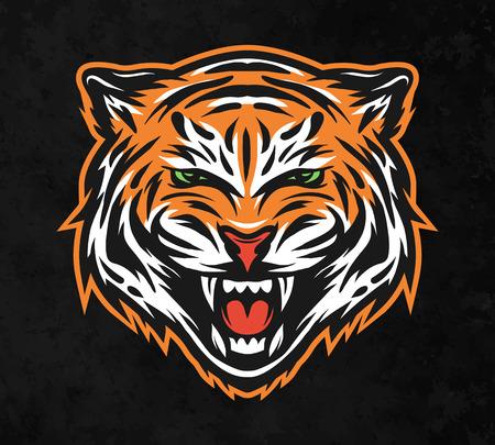 majestic: Aggressive tiger face. On dark background Vector illustration. Illustration