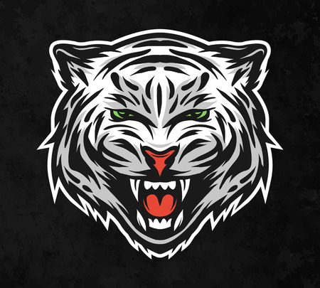 bengal: Face of a white bengal tiger. On dark background. Vector illustration. Illustration