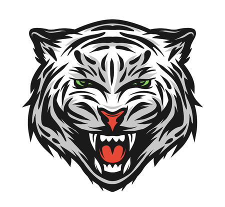 fierce: Face of a white bengal tiger. Vector illustration.