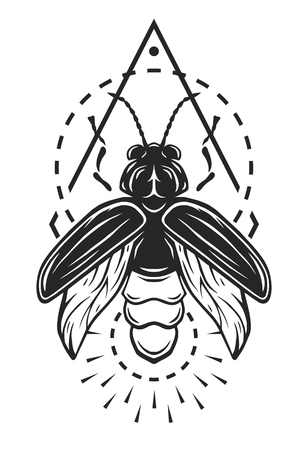 Firefly and geometric elements monochrome symbol Vector illustration.