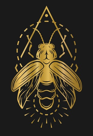 firefly: Firefly and geometric elements. Golden symbol on a dark background. Illustration