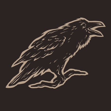 Screaming black crows Dark background. Illustration