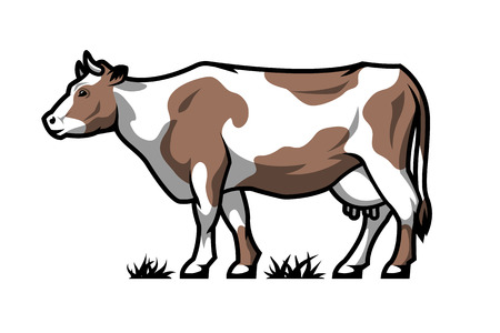 Dairy cow. Farm animal. Color option.