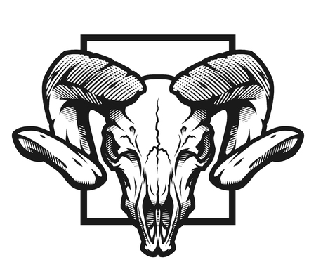 Cráneo de carnero, emblema blanco y negro, ilustración. Ilustración de vector