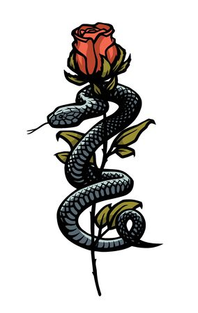 A snake entwined around a rose. Vector illustration.