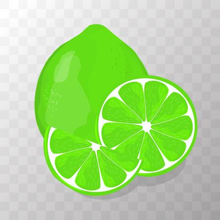Lime isolated on transparent background illustration Illustration