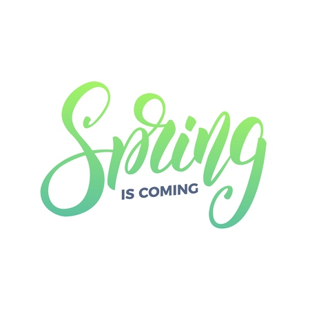 Spring. Trendy script lettering design Spring is Coming