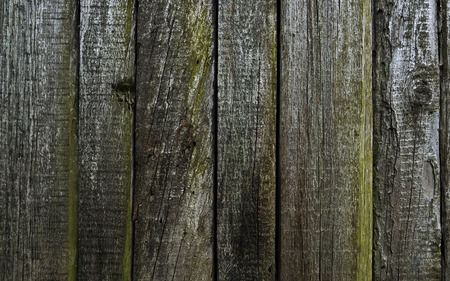 scabrous: Texture-old cracked boards, standing in a row Stock Photo
