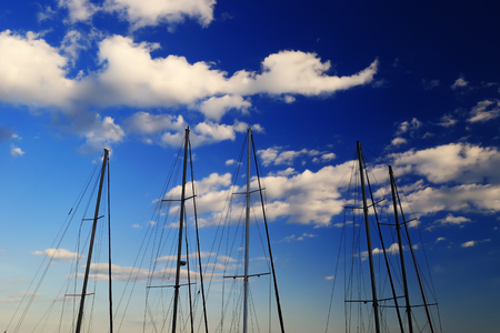 cordage: A number of masts without sails standing near the shore yacht, summer evening