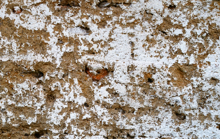 whitewash: Rough texture - clay wall with the remnants of whitewash