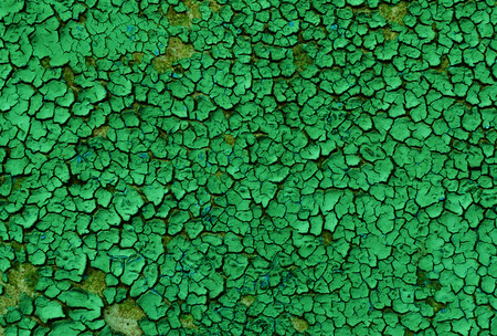scabrous: Texture - old green paint on a wooden surface, severely chapped and flaking