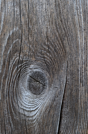 Wood texture-old cracked board Stok Fotoğraf