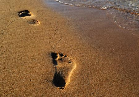 Footprint of man on warm golden sandy beach on sunset Фото со стока