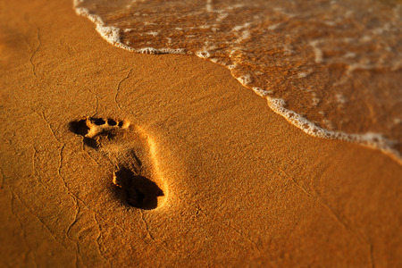 The trail of man in wet golden sand on the beach at sunset, Red sea