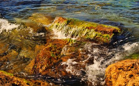 Beautiful summer seascape - wave washes the stone with algae, Black sea
