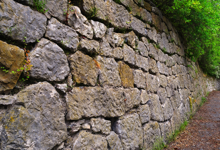 The wall, built of stones, with the overhanging branches of bushes, close-up in spring park  Фото со стока