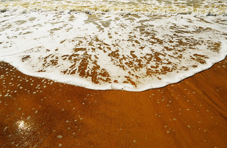 Wave rolls on the warm golden sandy beach in a summer sunny day close-up