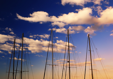 A number of masts without sails standing near the shore yacht, at dawn