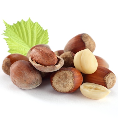 hazelnuts with young hazelnut leaf on white photo
