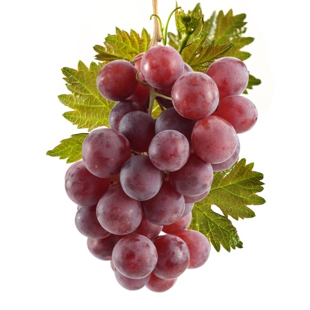 red grapes cluster with leafs photo