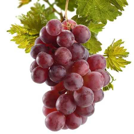red grapes on white background photo