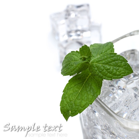 fresh mint on top of cold glass of water Stock Photo - 15386115