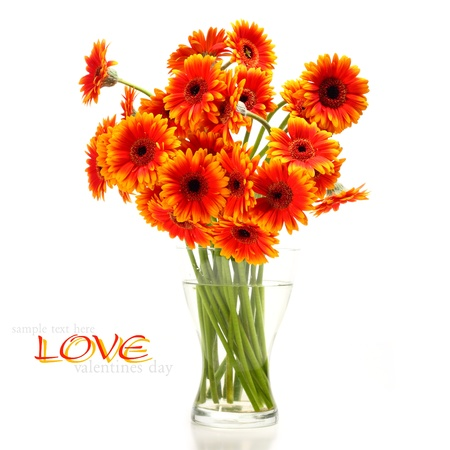 bouquet of gerbera flowers Stock Photo - 15759968