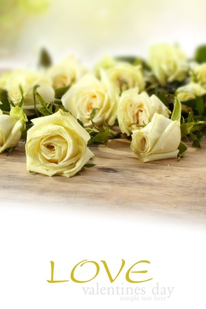 yellow roses on table Stock Photo - 15734267