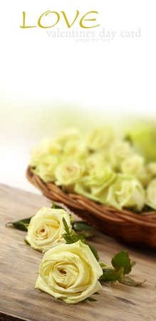 long steam yellow roses in the basket Stock Photo - 15734269